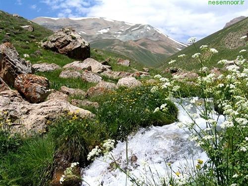 چشمه اولج