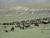 عدم وظیفه شناسی محیط زیست بخش بلده و شهرستان نور
