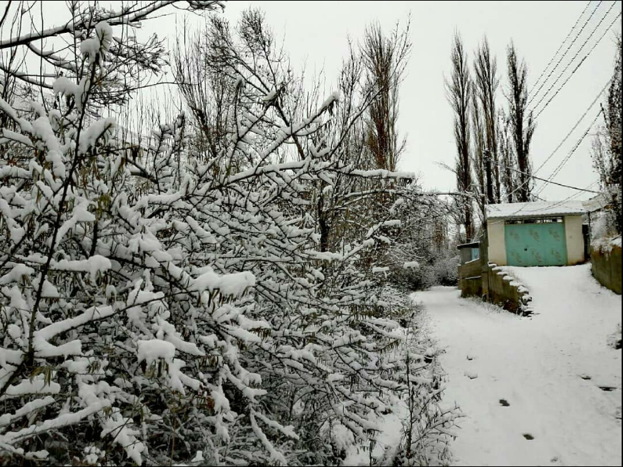 برف پاییزی 97