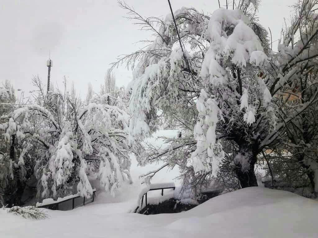بارش 50 سانتی برف در نسن