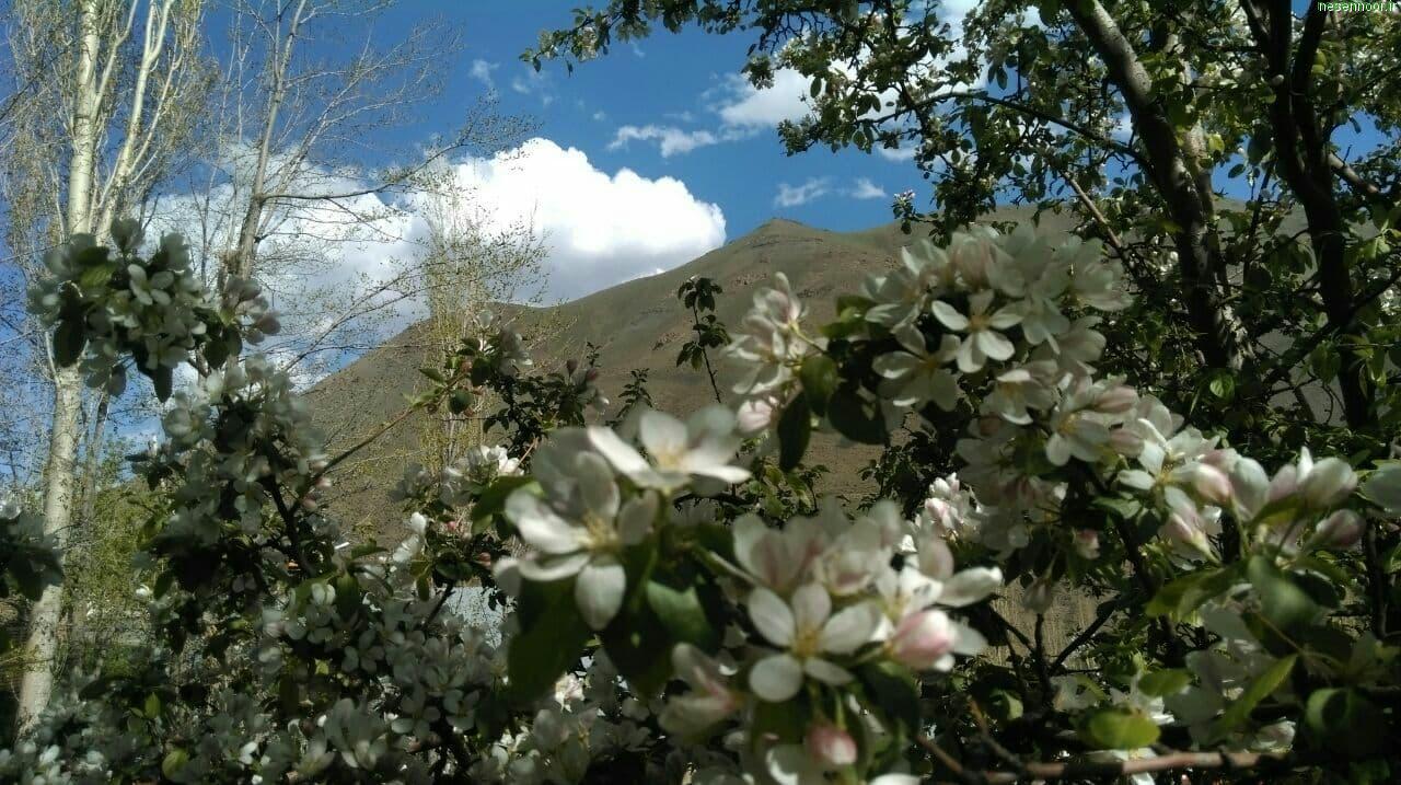 منظره های زیبای نسن در اردیبهشت 1400